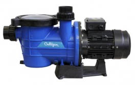 water_pumps_for_swimming_pools